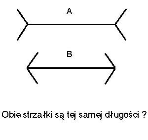 http://www.humor4u.info/zdjecia/zludzenia_optyczne/150/zludzenia-optyczne-iluzje-strzalki.jpg